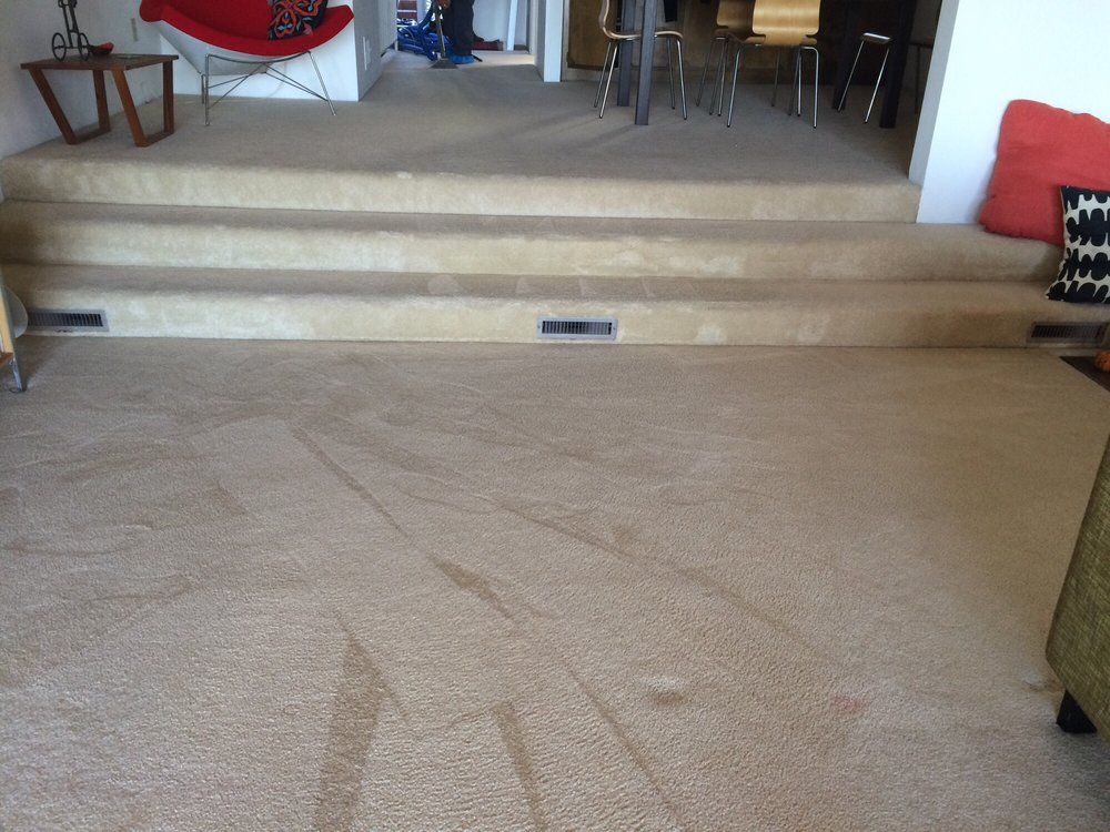 Affordable Residential and Commercial Carpet Cleaning Company Ontario