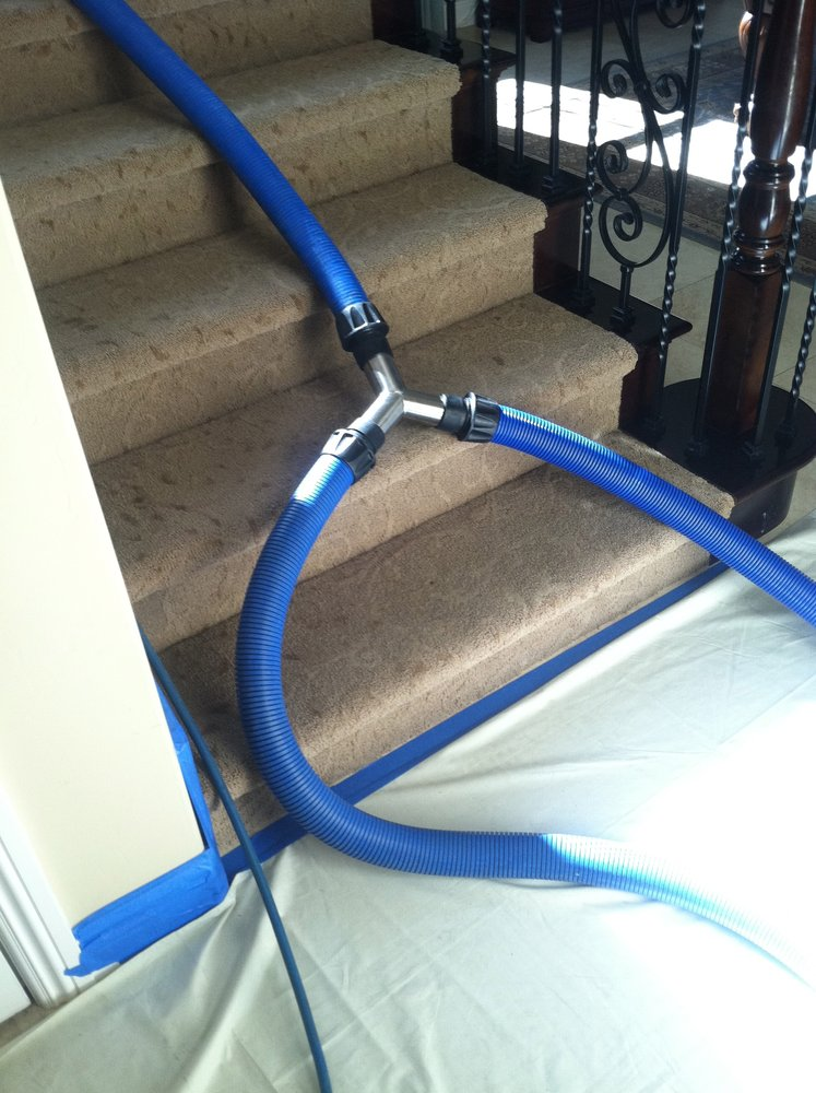 Carpet Cleaning Service Cost and Guarantee Ontario Rug Cleaning Company