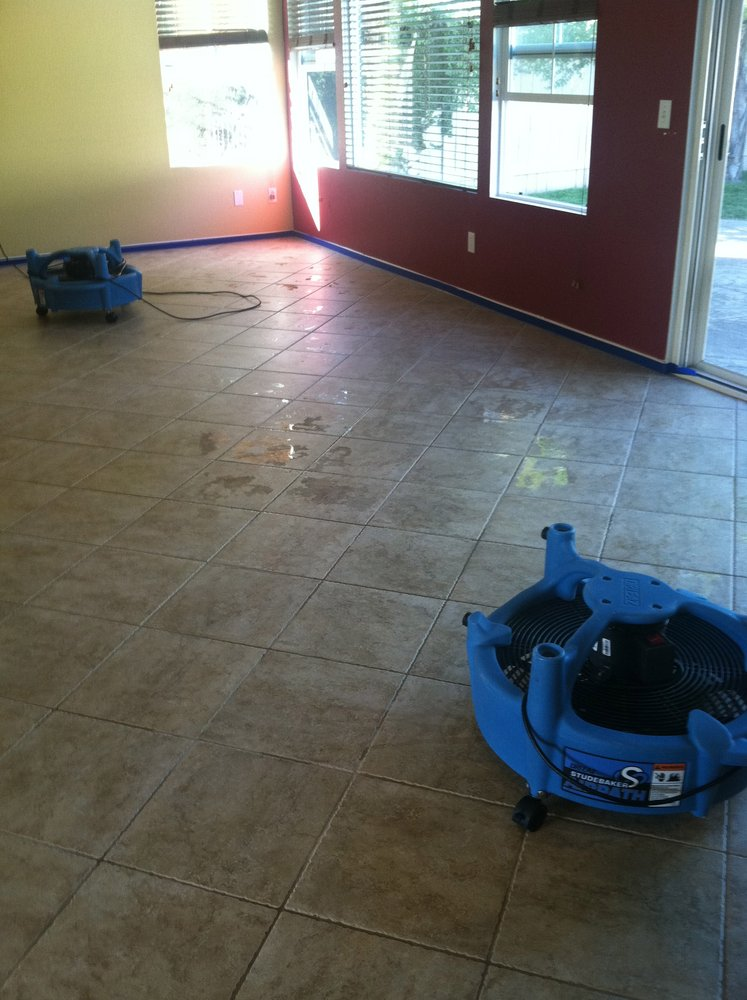 Most Affordable Carpet Cleaning Deals Ontario Best Cleaning Services