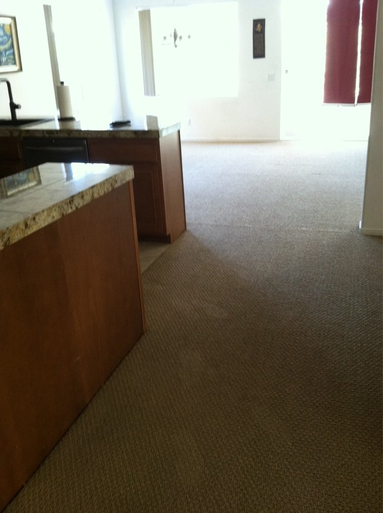 No Chemicals Carpet Cleaning Service Ontario Eco-Friendly Carpet Cleaning