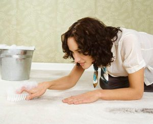 7 Easy Carpet Cleaning Tips
