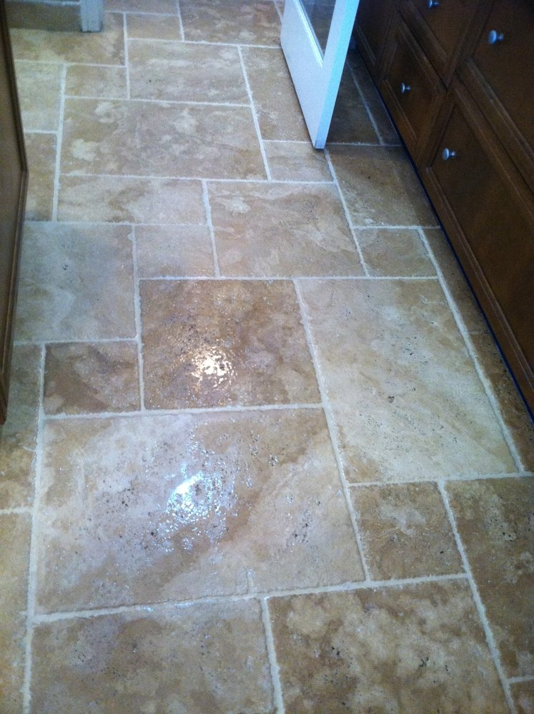 Pet Odor and Stain Carpet Cleaning Service Ontario Carpet and Area Rug Cleaning