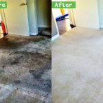Thorough Carpet Cleaning and Maintenance Is a Necessary Task in Ontario