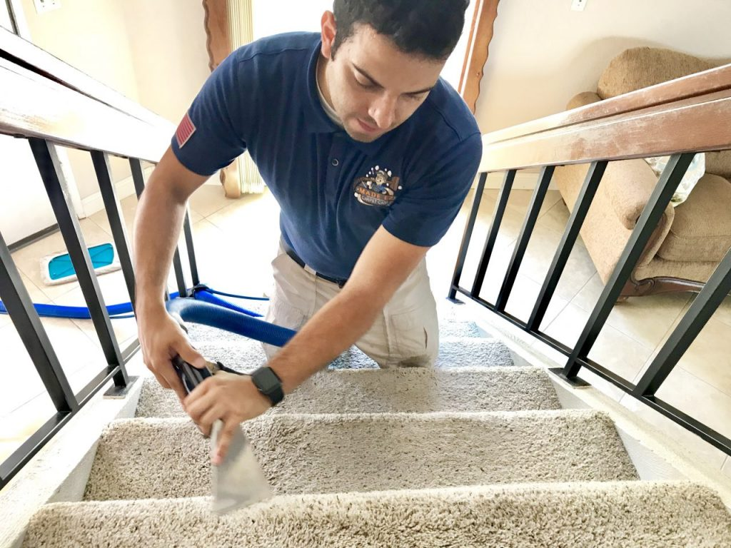 Carpet Cleaning Services in Ontario County